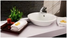 Kokią vonios kriauklę rinktis?